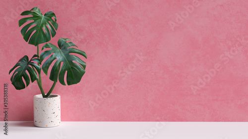 Photo Tropical leaves on pink background copy space
