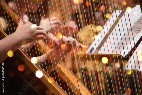 Wallpaper Mural Harp player during a classical concert music