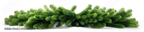 Fotografia Natural fir Christmas tree branches