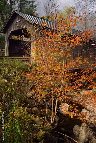 Vászonkép Sunny break on Pine Brook Covered Bridge Waitsfield Vermont in the Fall