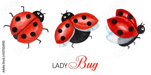 Watercolor ladybug set, flying bright cartoon insects Fototapeta