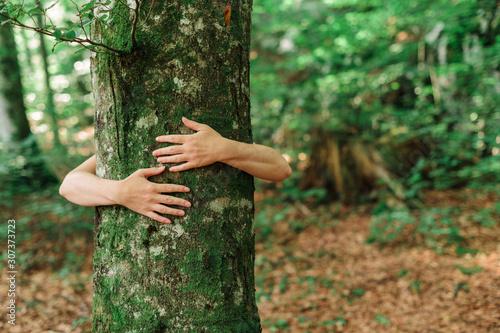 Fotografia Environmentalist tree hugger is hugging wood trunk in forest