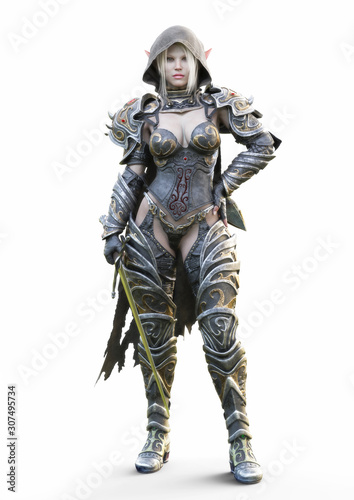 Fotografie, Obraz Portrait of a fantasy heavily armored hooded dark elf female warrior with white long hair and equipped with a sword