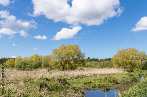 Fototapeta Le Marais de Guînes (Espace Naturel Sensible)