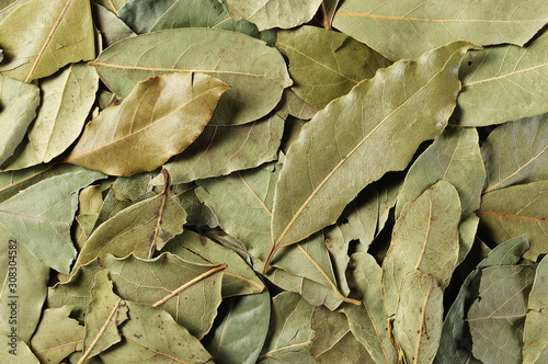 Stampa su Tela Bay leaves background and texture