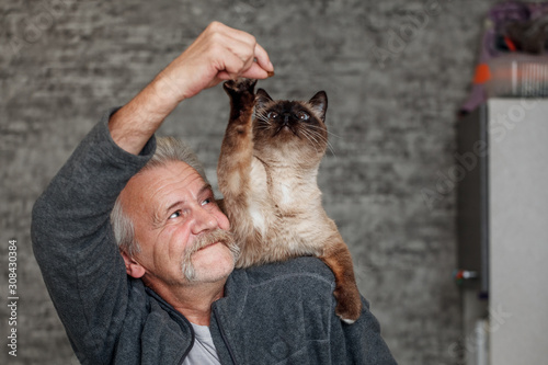 Old man plays with siamese cat in the kitchen Fototapeta