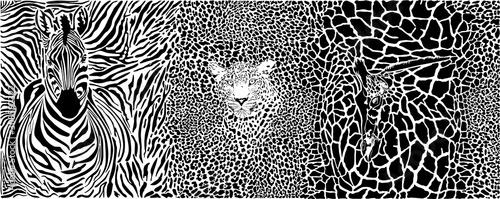 Fototapeta premium zwierzę, abstrakcyjny, tło, projekt, dekoracja futra tło, rysunek, grafika, elegancja, ilustracja, zebra, lampart, żyrafa, materiał, wzór, bez szwu, druk, wystrój skóry lamparta, powtórzenie, t