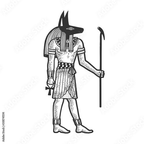 Obraz na plátně Anubis Ancient Egyptian deity god of death sketch engraving vector illustration