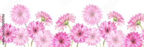 Fotografija Floral seamless border of pink gerbera flowers