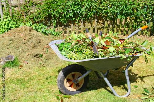 Obraz na płótnie brouette de feuilles de taille ,et sécateur pour recyclage