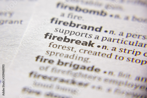 Fotografie, Tablou Word or phrase Firebreak in a dictionary.