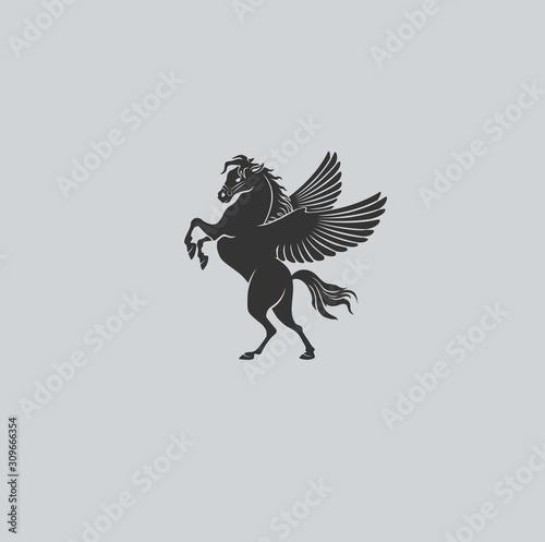 Obraz na plátně fabulous animal pegasus