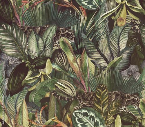 Fototapeta Tropikalny wzór z zachmurzonym lampartem i