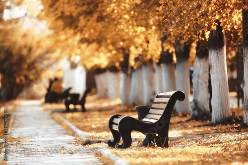Obraz na plátne landscape in autumn park bench / beautiful garden bench, concept of rest, nobody