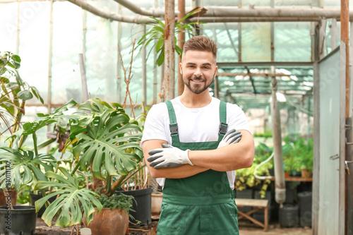 Valokuvatapetti Handsome male gardener in greenhouse