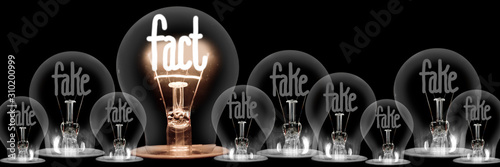 Fotografering Light Bulbs with Fake and Fact Concept