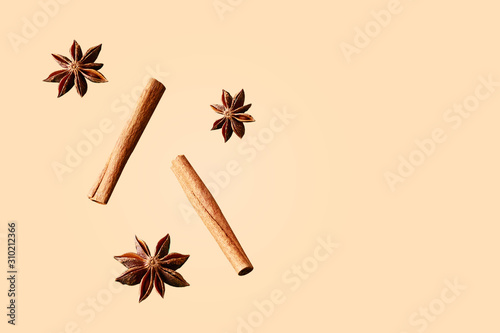Valokuva Composition of star anise and cinnamon sticks on a colored background