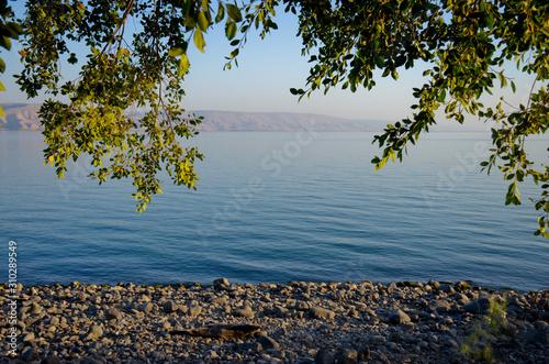 Landscape Of Kinneret Lake - Galilee Sea Fototapet