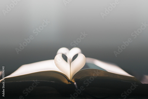 Fotografia, Obraz Soft focus open holy Bible at window,heart pages background