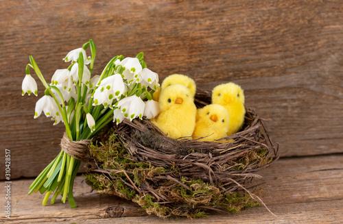Leinwand Poster Süße Küken und Schneeglöckchen zum Osterfest