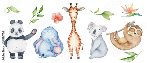 Photo Watercolor animals character collection