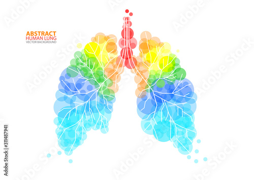 Foto Abstract human lung vector with transparent orbs