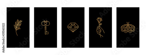 Fotografie, Tablou Set Black and Gold stories highlights covers With a butterfly, diamond, twig, hand holding a rose and key