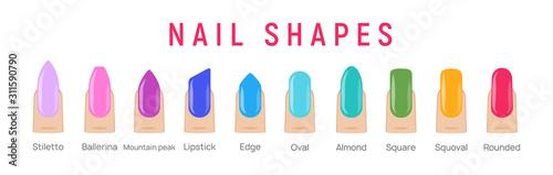 Fotografia Nail shapes manicure vector art