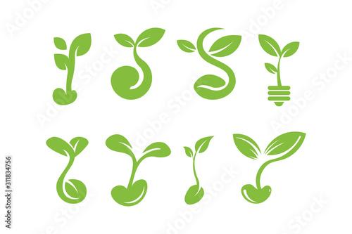 Fotografie, Obraz seed logo icon vector set