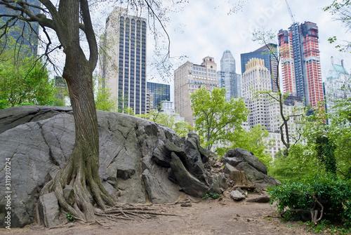 Canvastavla Rock View Central Park