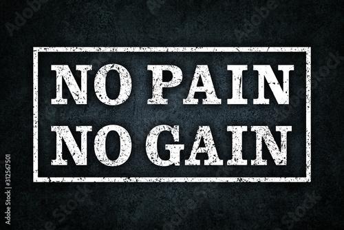 Canvas Print NO PAIN NO GAIN, グランジ , 文字