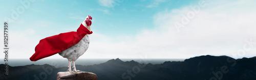 Fotografie, Obraz white hen super hero on the mountain