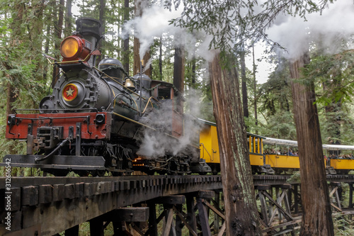 Wallpaper Mural Steam train passing through redwood forest