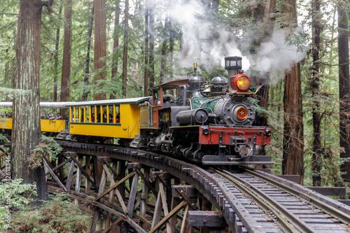 Fototapeta Steam train crossing an old trestle through redwood forest