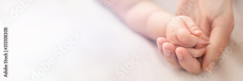Obraz na plátně A little baby hand in mothers palm on white background, banner with free copy sp
