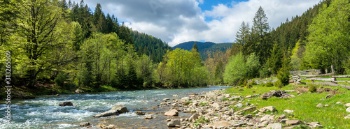 Stampa su Tela river in mountains