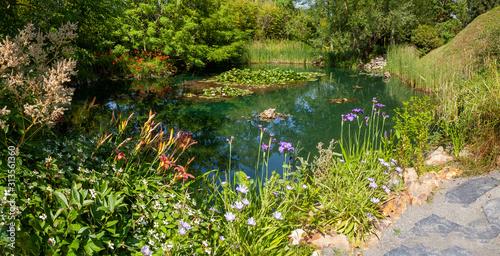 Obraz na plátně Jardin - fleurs bordant une mare