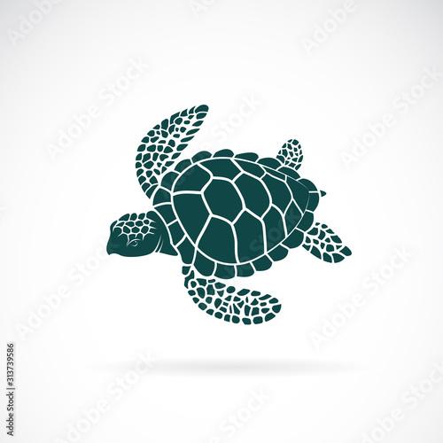 Obraz na plátně Vector of turtle design on a white background