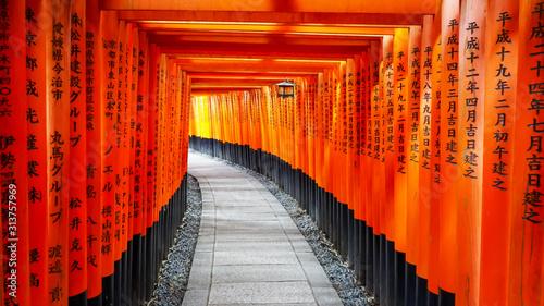 Fotografia walking past torii gates and lantern at fushimi inari shrine