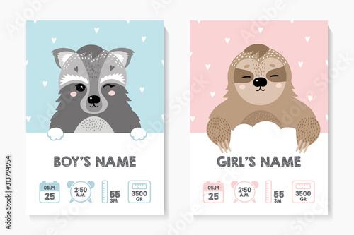 Fototapeta premium Zestaw plakatów dla dzieci, wzrost, waga, data urodzenia. Raccooround. Ilustracja metryczna noworodka do sypialni dzieci.