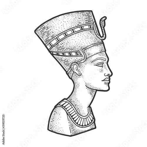 Photo Nefertiti Ancient Egyptian Pharaoh statue sketch engraving vector illustration