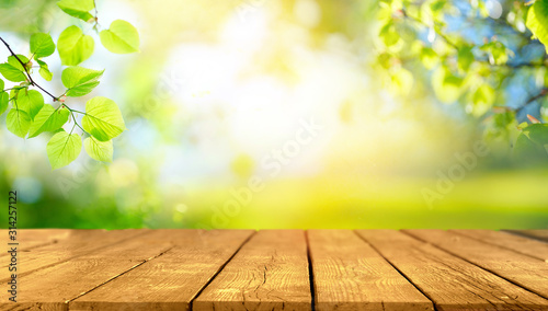 Beautiful spring background with green juicy young foliage and empty wooden table in nature outdoor. Natural template with Beauty bokeh and sunlight.