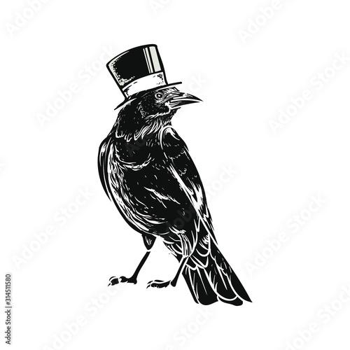 Canvas Print black raven crow bird vector