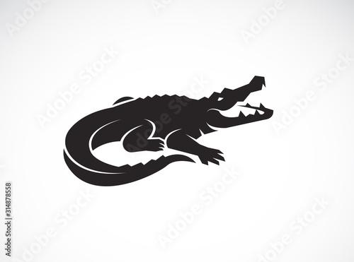 Photo Vector of crocodile design on white background