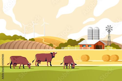 Obraz na płótnie Agriculture industry, farming and animal husbandry concept