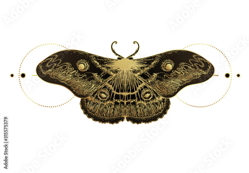 Fotografie, Tablou Golden moth over sacred geometry sign, isolated vector illustration