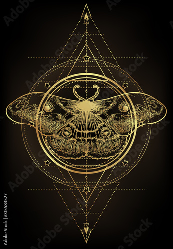 Obraz na płótnie Golden moth over sacred geometry sign, isolated vector illustration