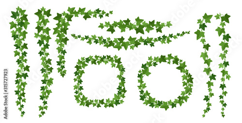 Carta da parati Green ivy frames flat vector illustrations set