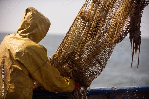 Ukraine, Sea of Azov, industrial fishing, Azov goby Fototapeta