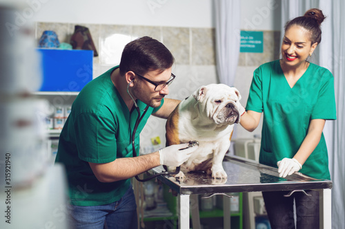 Veterinarian and assistant in vet clinic at work.